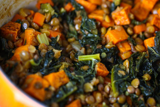 lentil curry curried lentils with sweet photo sweet potato lentil ...