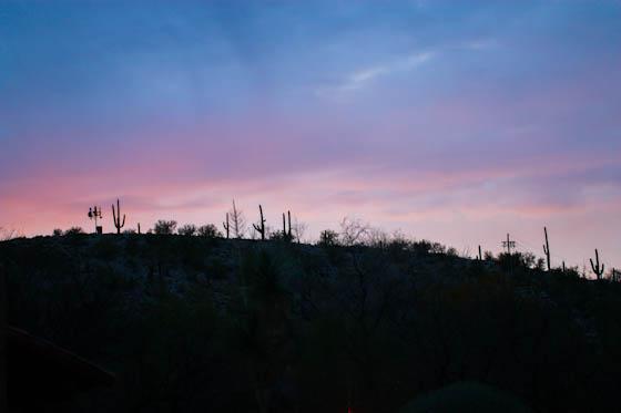 Canyon Ranch-8967